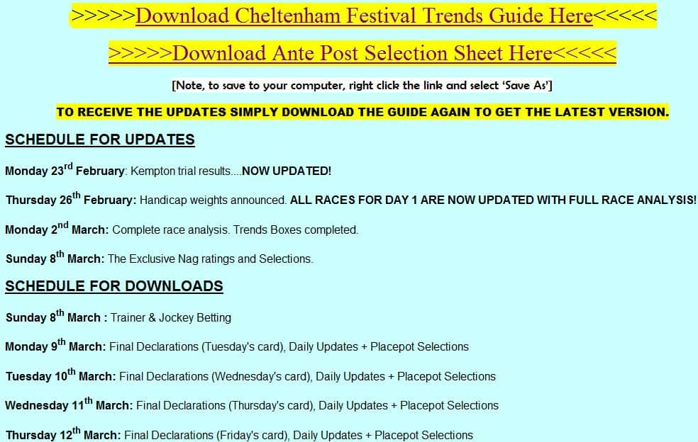 Festival Trends Content