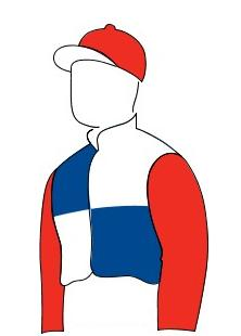 Geegeez.co.uk Racing Colours