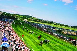 Racing at Newton Abbot