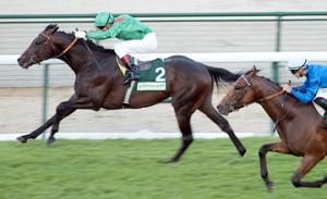 Behkabad wins the 2010 Prix de l'Arc de Triomphe?