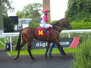 Khajaaly at Kempton