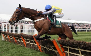 Peddlers Cross a Champion Hurdle contender