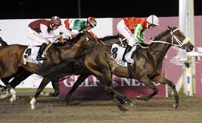 Bronze Cannon wins in Meydan