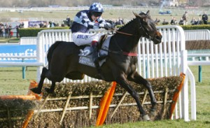 Supreme Novices Hurdle winner, Menorah
