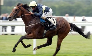 Nathaniel to go for Ascot follow up?