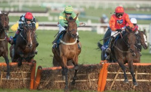 Brampour under-rated for the Champion Hurdle?
