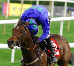 Can anyone swat the Fly in the 2012 Champion Hurdle?