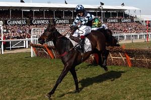 Menorah makes his chasing debut at Exeter today