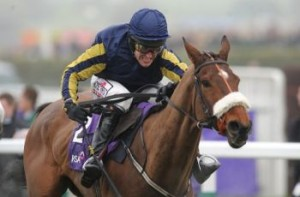 Bostons Angel: outsider in the 2012 Cheltenham Gold Cup