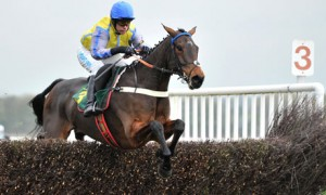 Arkle Trophy 2012: Peddlers Cross