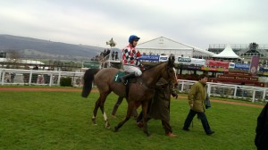 The Giant Bolster storms to Cheltenham victory