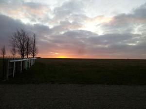 Dawn over Newmarket racecourse