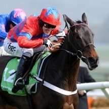 Is Sprinter Sacre a cert for the Champion Chase?
