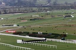Cheltenham Festival 'bets to nothing'