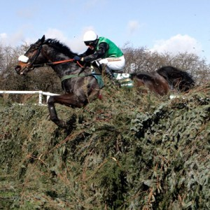 Grand National 2013 Day One Preview Tips