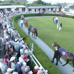 Wexford's Parade Ring