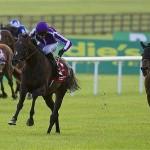 Camelot's Irish Derby win didn't excite Tony!