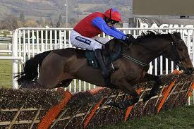 Quevega - on a Mares' Hurdle five-timer