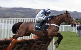 Oscar Whisky - no 2013 Welsh Champion Hurdle