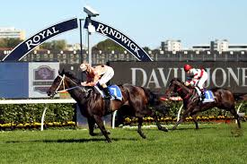Black Caviar - final race