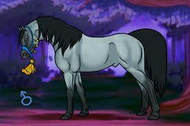 horse gender