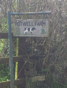 Welcome to Potwell Farm