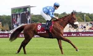 1000 Guineas Preview / Tips