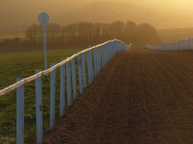 Mandown gallops, Upper Lambourn
