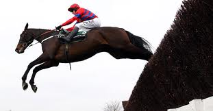Sprinter Sacre - rated within 2lb of Kauto Star