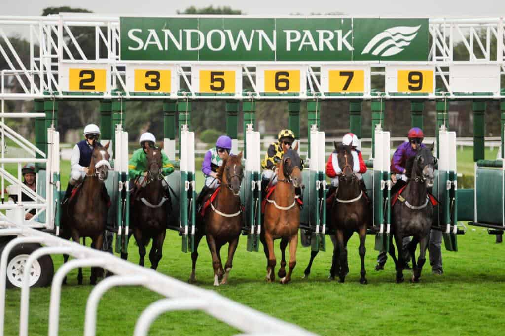 Sandown features in the list of Satuday sprint previews