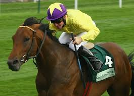 Sea The Stars - first runner today