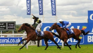 Coral Eclipse Preview, Trends, Tips 2013