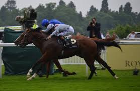 Dawn Approach (far side) wins at Ascot