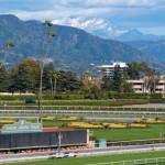 Santa Anita: a beautiful setting