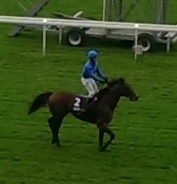 Farhh won 2014 QIPCO Champion Stakes