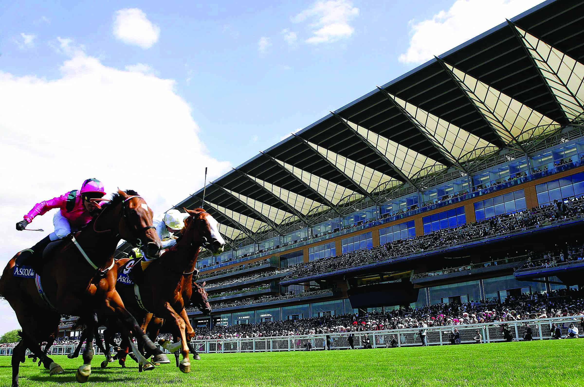 ascot_horsesgrandstand