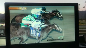 Breeders Cup Classic 2013 photo finish: Mucho Man Man edges Will Take Charge in a thriller