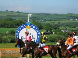 Runners At Kinsale Point-To-Point