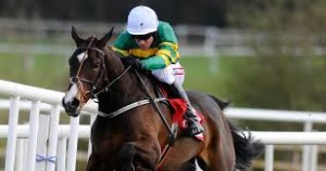 Jezki - Champion Hurdle winner