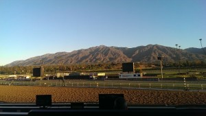 Breeders Cup 2013 review: Santa Anita