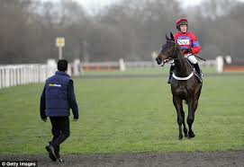 Sprinter Sacre - could run again this season