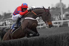 Will we see Sprinter Sacre on the telly?