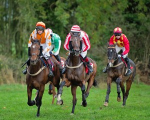 Action From A Point-To-Point (Courtesy of Jennifer O'Sullivan)