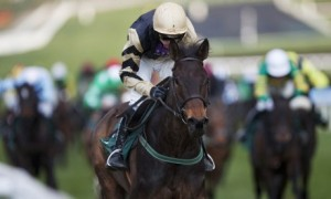 Briar Hill seeking a second Festival win in the Albert Bartlett Novices Hurdle