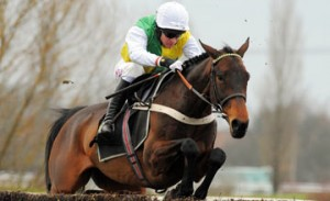 bet365 Gold Cup Preview, Tips, Trends: Can Burton Port finally get that elusive big win?