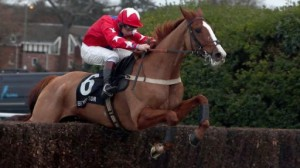 Sire de Grugy claims Horse Of The Year honours