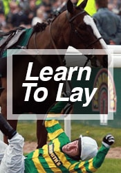 Learn To Lay