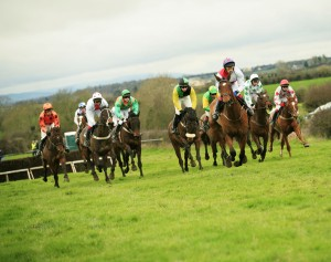 An Irish Point-to-Point. [Image: flickr]