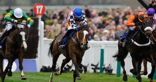 The Giant Bolster