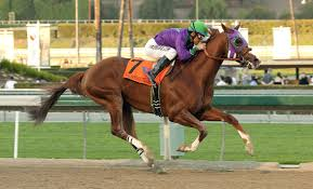 California Chrome only 2nd in Meydan